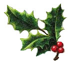 Vintage Christmas Clipart - Spring of Holly