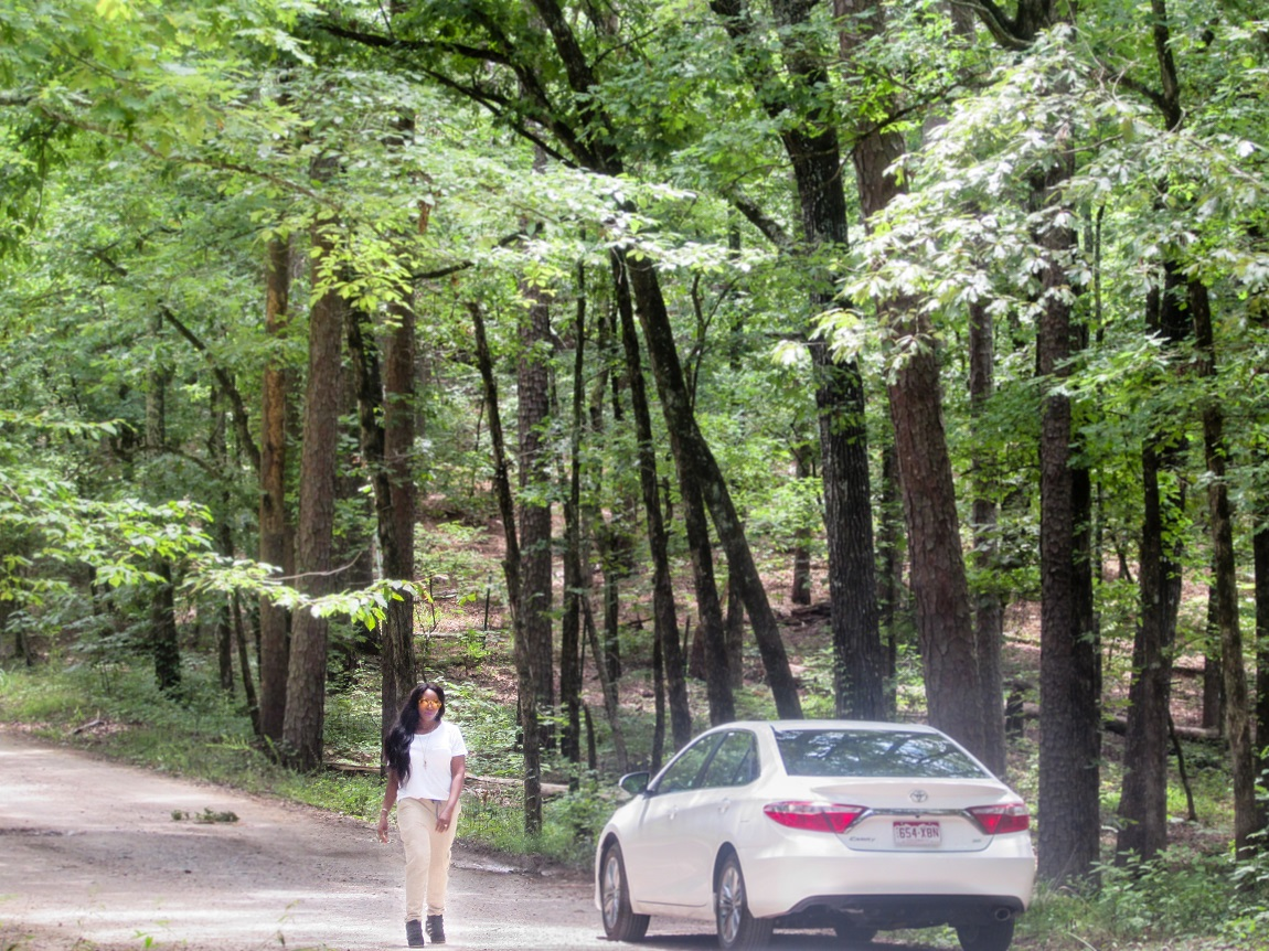 Ouachita National Forest - Road Trip - 26 Places to Visit in Arkansas - Christobel Travel