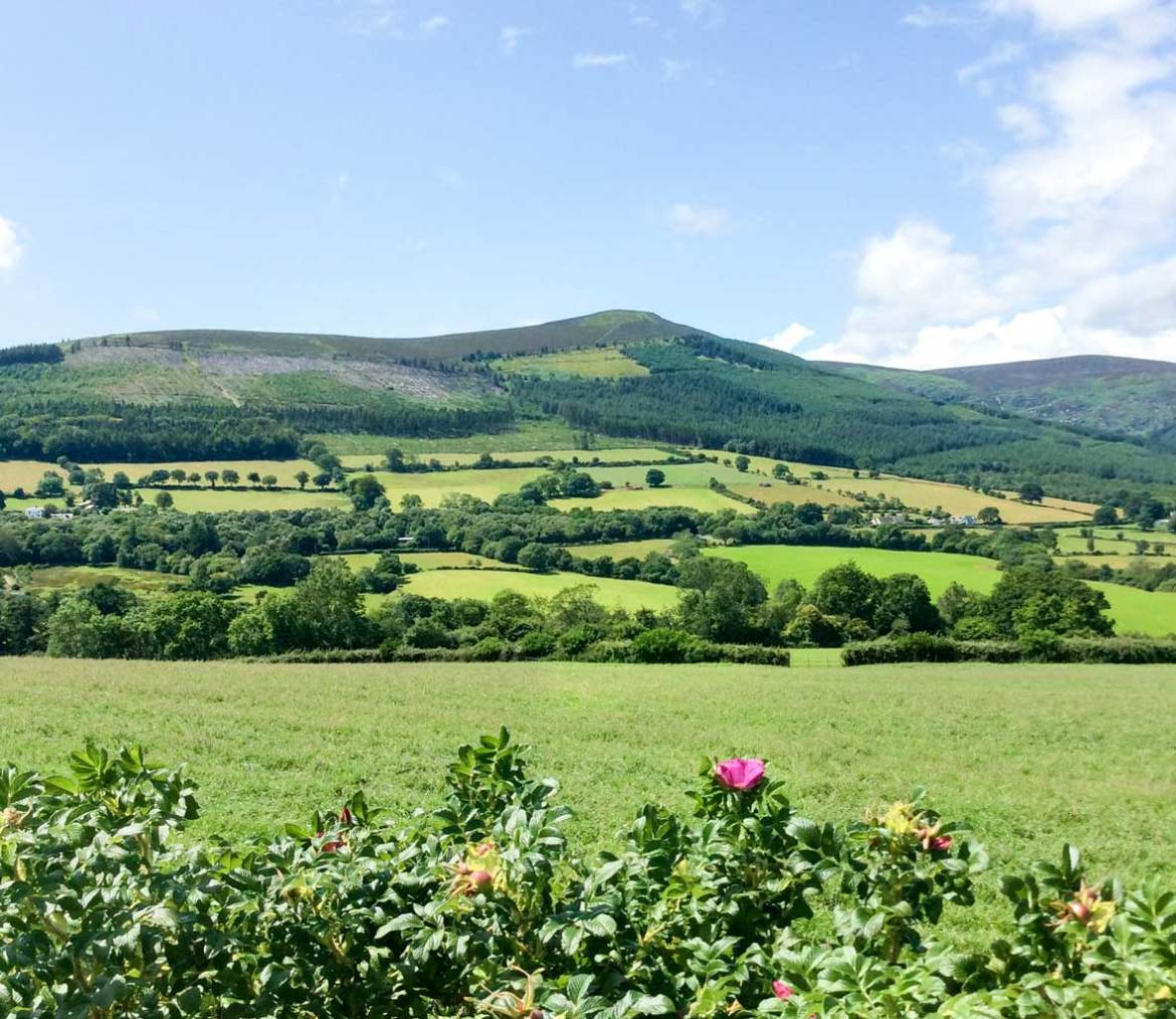 Wicklow Mountains - 41 Things to do in Wicklow County - Christobel Travel
