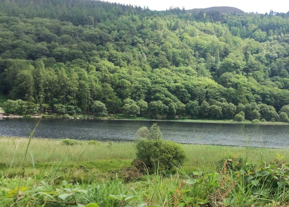 Lower Lake, Glendalough Valley - 41 Things to do in Wicklow County - Christobel Travel