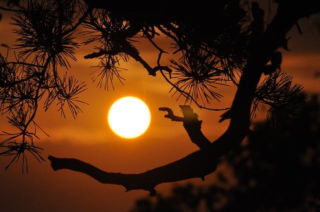 The Sun Burns Bright