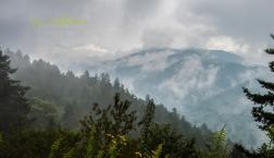 When is the best time to visit the Smoky Mountains? Decision Guide