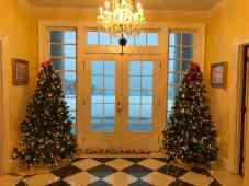 snow_christmas_trees