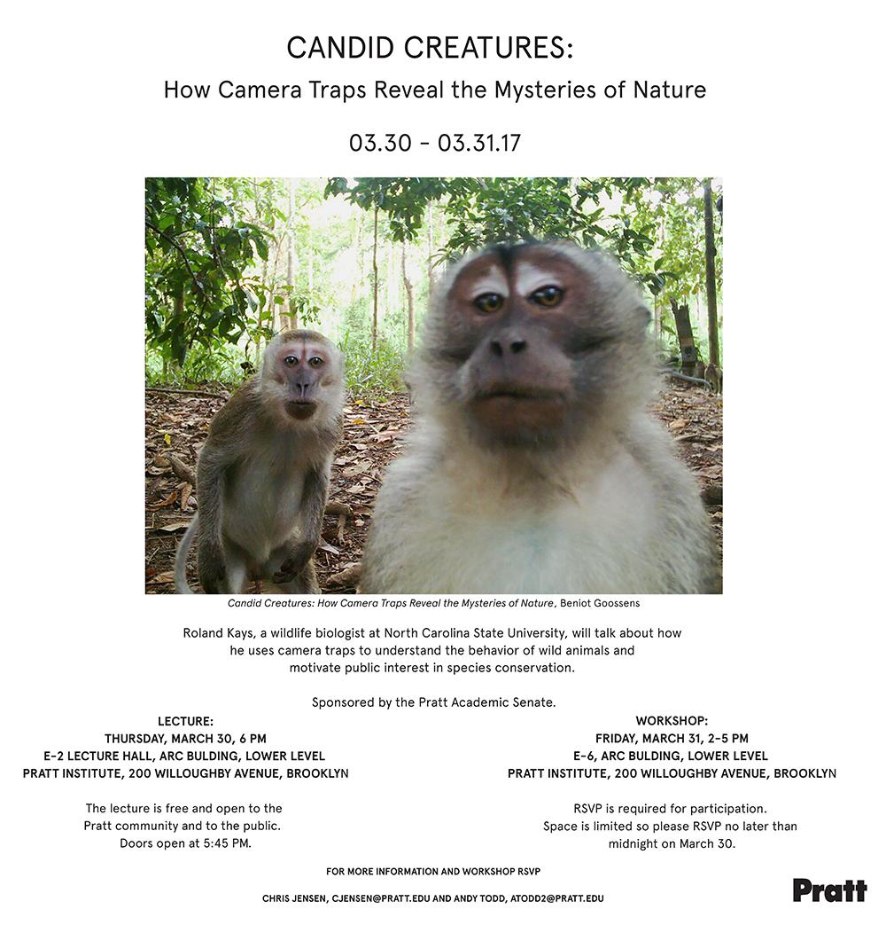 Candid Creatures- Insta