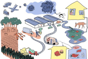 The Meat Industry's Impact on Climate Change © Kearin Cook (Project Summary)