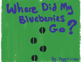 Where Did My Blueberries Go? © Peggie Liew (Project Summary)