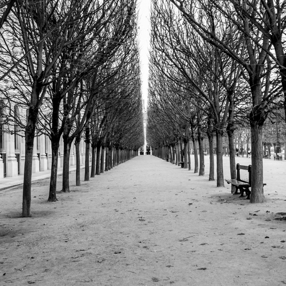 Garden of the Palais Royal, Paris in France.