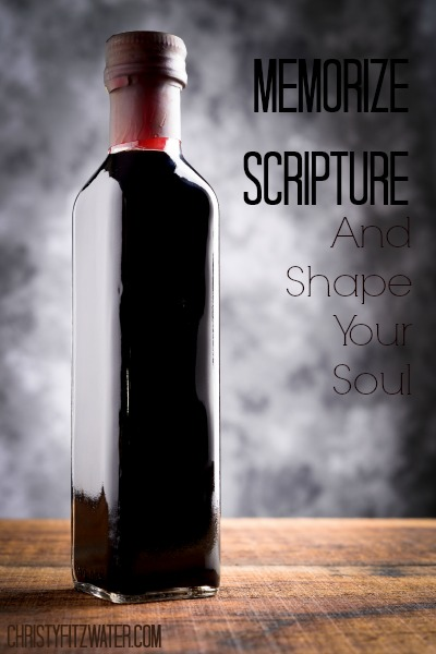 Memorize Scripture and Shape Your Soul  -christyfitzwater.com