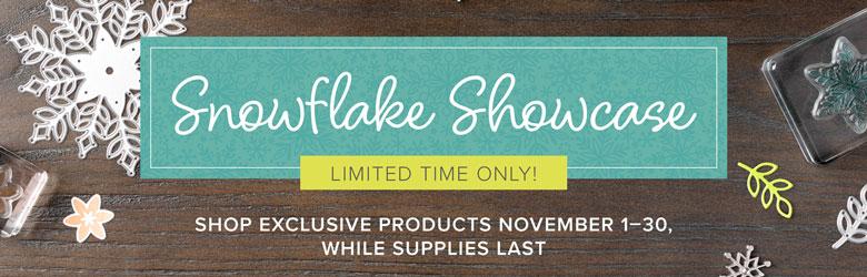 Snowflake Showcase banner