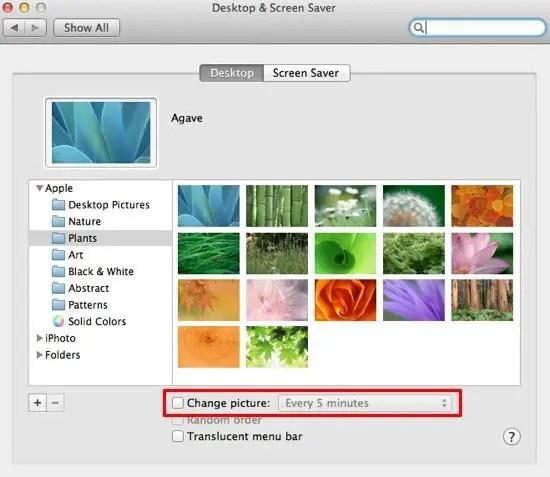Desktop Animations