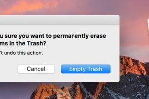 delete files macos sierra