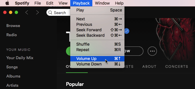 spotify volume up