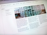 Salient Group website - about the company page