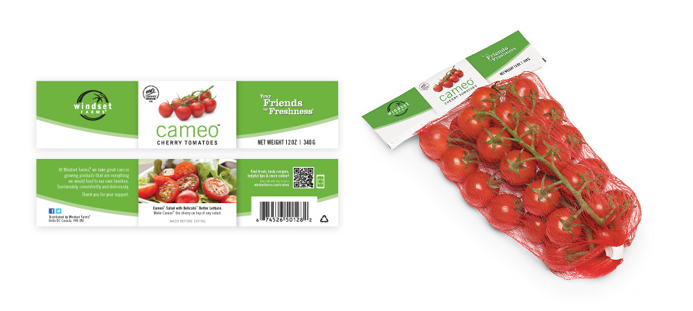 Front and back of the header card for the Cameo Cherry Tomatoes net-bag incorporates the same design as the plastic bags, made to fit the much smaller, longer format of the head card. On the right, I've mocked up the new header card design onto an existing photo of the net-bag.