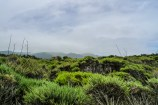 California-Trip-2014-July-026-P1210377