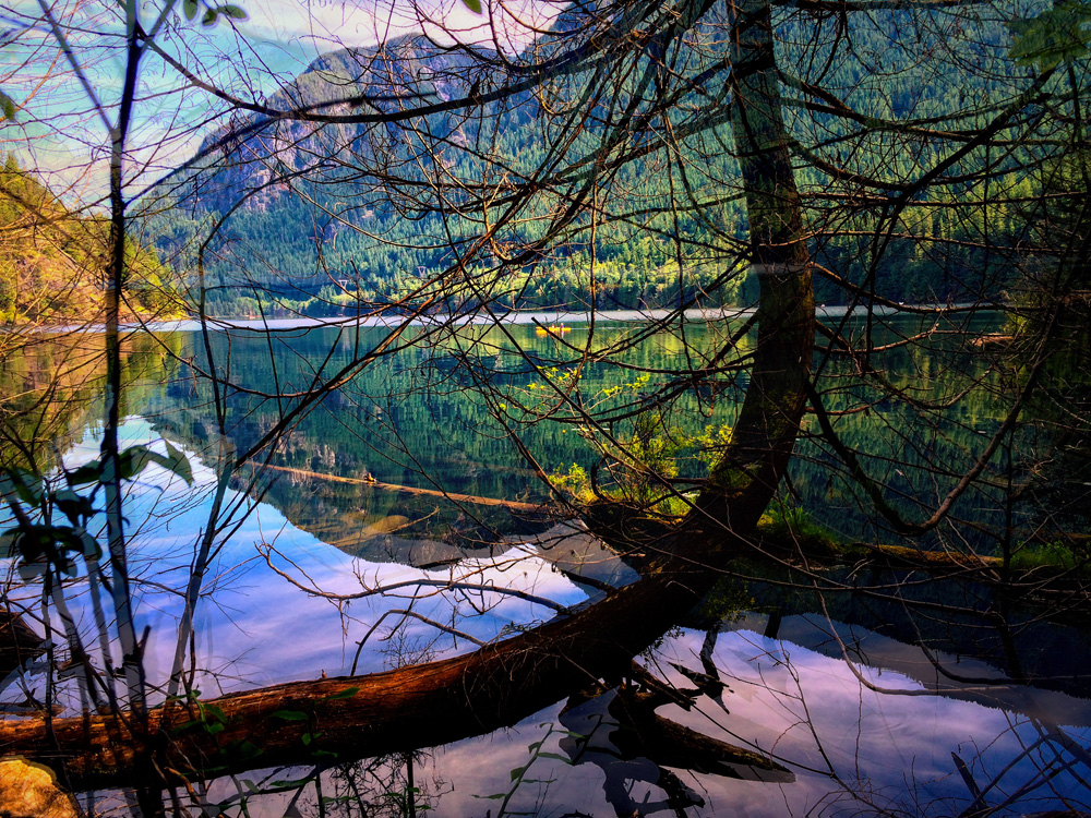 I shot this on a recent hike around Buntzen Lake... We spend so much time on the lake looking into the trees, it's nice to see a different vantage point.
