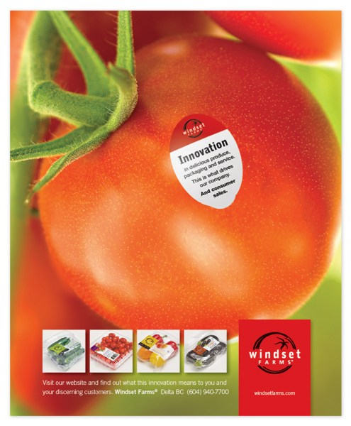 Windset Farms Grocer Today magazine ad, a produce trade magazine.