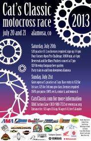 ChromaKit Graphic Design Cat's Classic 2013 Poster