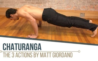 The Chaturanga Breakdown with Matt Giordano