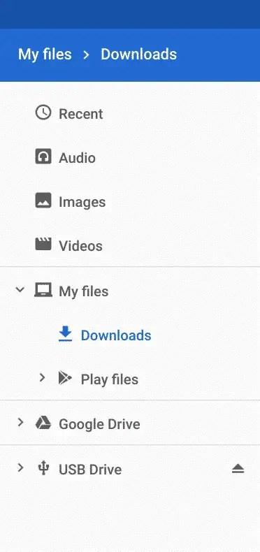 Storage Devices on Chromebook
