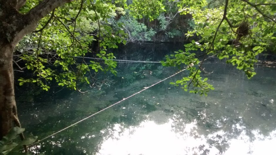Angelita Diving Cenote