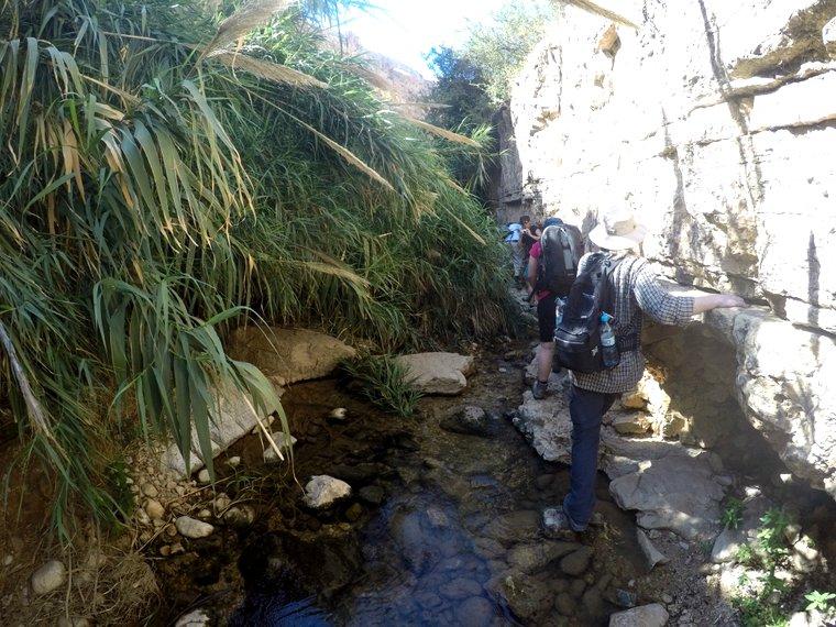 wadi qelt hiking adventure