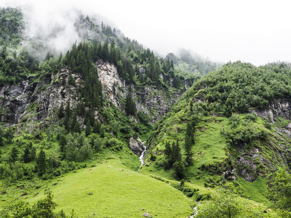 Almenweg Bad Gastein