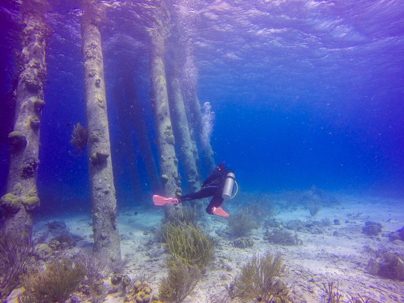 Bonaire Tauchen