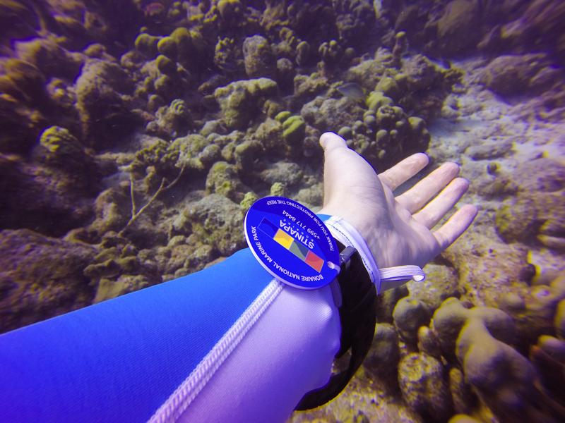 Bonaire Marine Tag