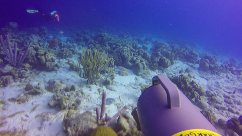 Underwater scooter bonaire