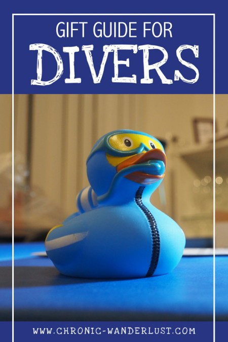 gift guide for divers pinterest