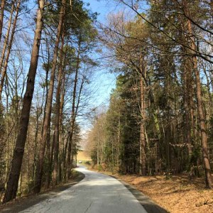 Steiermark Roadtrip