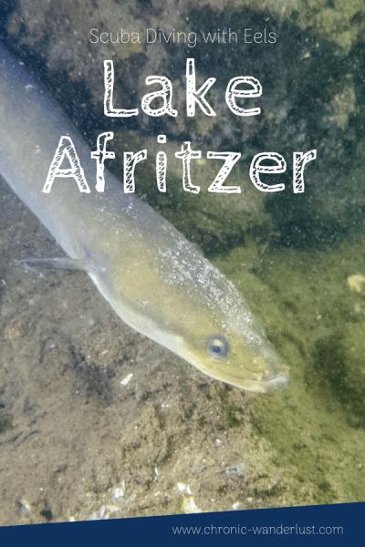Scuba Diving Afritzer See Carinthia Eels