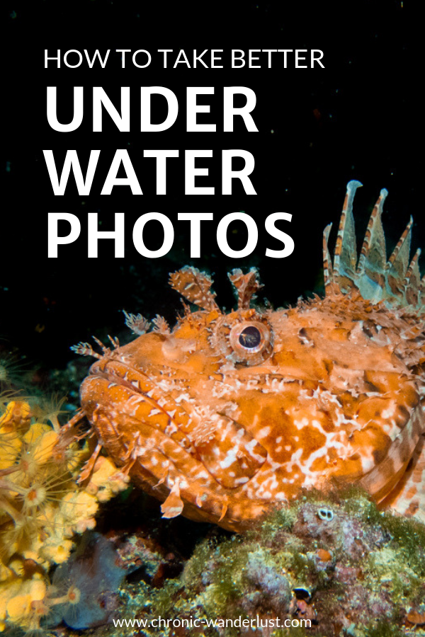 How to underwater photos