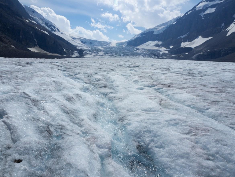 Alberta Roadtrip Athabasca Gletscher