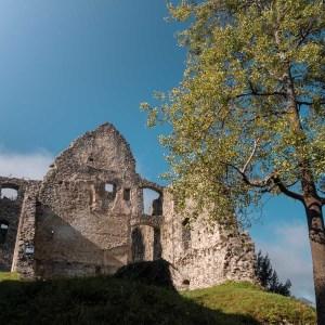 Castle Ruin Losenstein