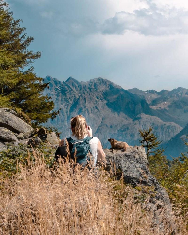 Wandern Schweiz Murmeltier Fotografieren