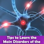 Main Disorders of the Nervous System