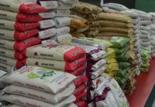 President Buhari has ordered that seized rice be shared to citizens