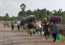 Over 20,000 Nigerians have fled into Niger Republic following violence in Zamfara and Kaduna