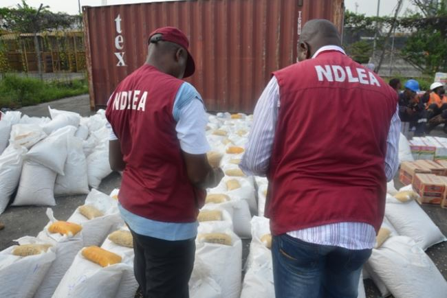 National Drug Law Enforcement Agency (NDLEA) officials parading some illicit drugs