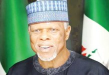 Customs boss Hameed Alli