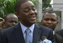 Former Minister of Aviation, Femi Fani-Kayode