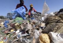 Plastic bags, site trash