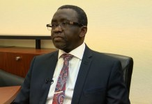 Special Adviser to President Buhari on Economic Matters, Dr. Adeyemi Dipeolu