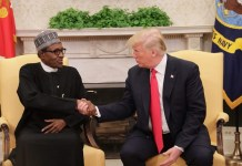 President Muhammadu Buhari and President Donald Trump shake hands in the White House
