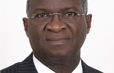 Minister of Power, Works and Housing, Babatunde Raji Fashola