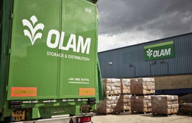 Olam International will acquire Dangote Flour Mills for N130 billion