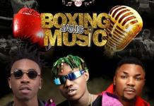 Mayorkun, Oritsefemi and Zlatan will headline GOtv Boxing Night 20