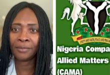 Mrs Iyabo Arinola Awokoya breaks down CAMA Act and why it is not what many think it is